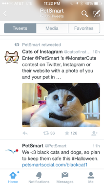 Pets Tweets 1