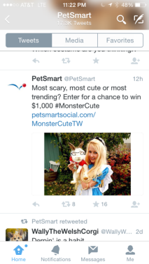 Pets Tweets 2